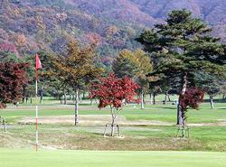 ゴルフ場の自然