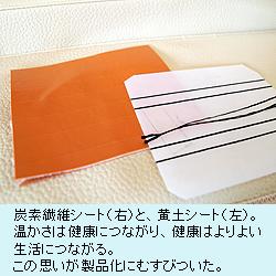 炭素繊維シート(右)と、黄土シート(左)