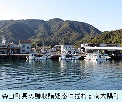 minamiooosumi.jpg