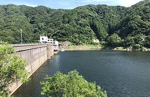 福岡 市 の 貯水 率