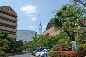 福岡 4つの高級住宅街の特徴:【公式】データ・マックス NETIB-NEWS