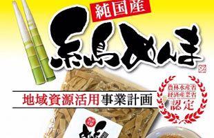 糸島の放置竹林で希少な国産メンマを製造:データ・マックス ...